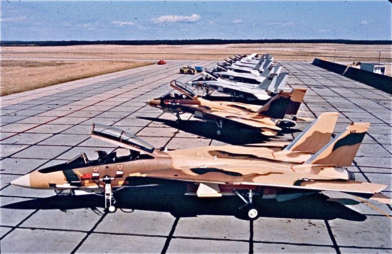 Dos F-14A con esquemas de camuflaje de Irán pero insignias norteamericanas reposan junto a otros Tomcat de la Navy en la factoría de Grumman en Calverton, Nueva York. (Fuente: http://flitetime.net/iran.html)