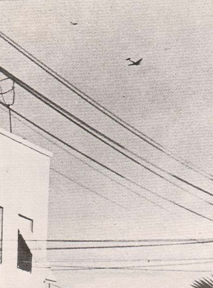Dramática fotografía tomada por un civil sobre los cielos de Tel Aviv el 3 de junio de 1948. El S-199 pilotado por Modi Alon ataca a uno de los dos Douglas C-47 egipcios de bombardeo que fueron derribados aquel día. Fueron las dos primeras victorias aéreas de la jovencísima IAF (fuente: http://101squadron.com)